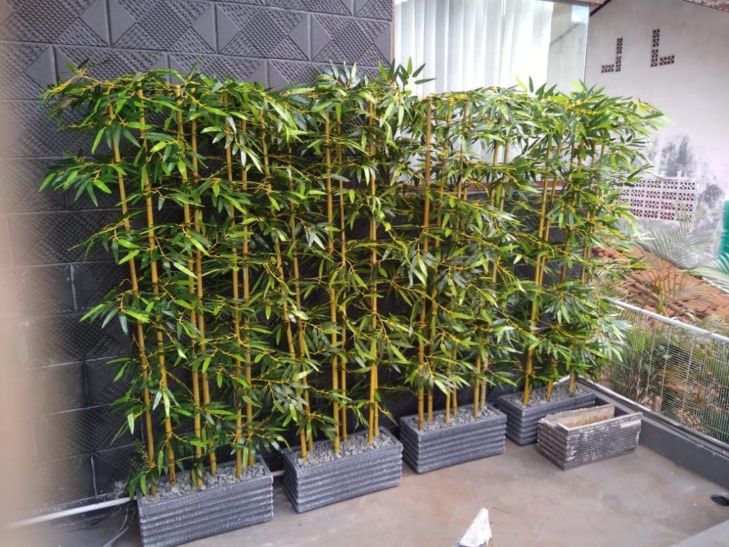 planter 6